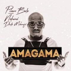 Prince Bulo - Amagama (pastor Snow Afro Mix) Ft. Nokwazi & Dladla Mshuqisi